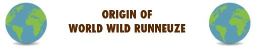 WWR Origin