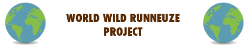 WWR project