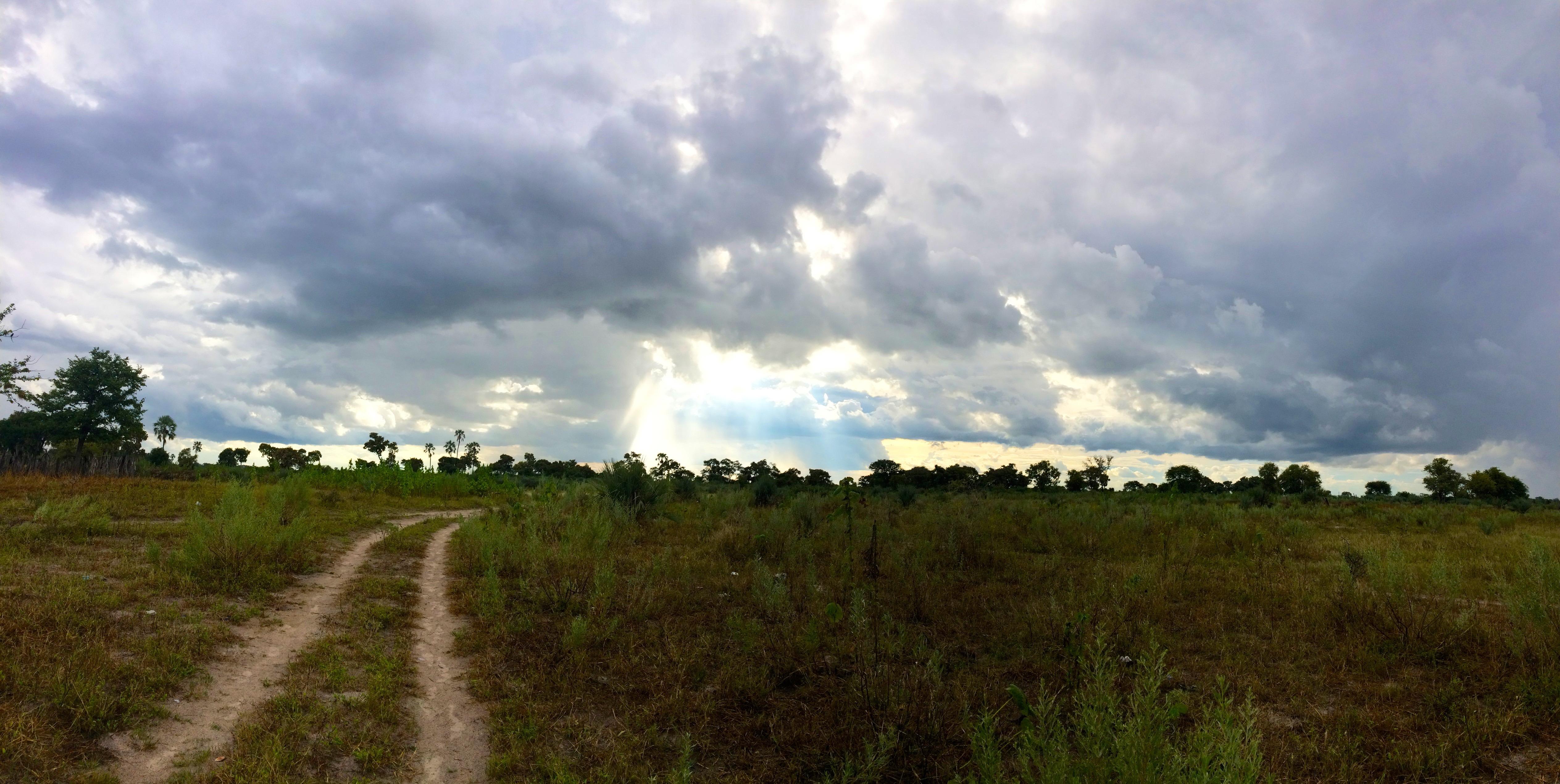 Lumières – près du Delta d'Okavango