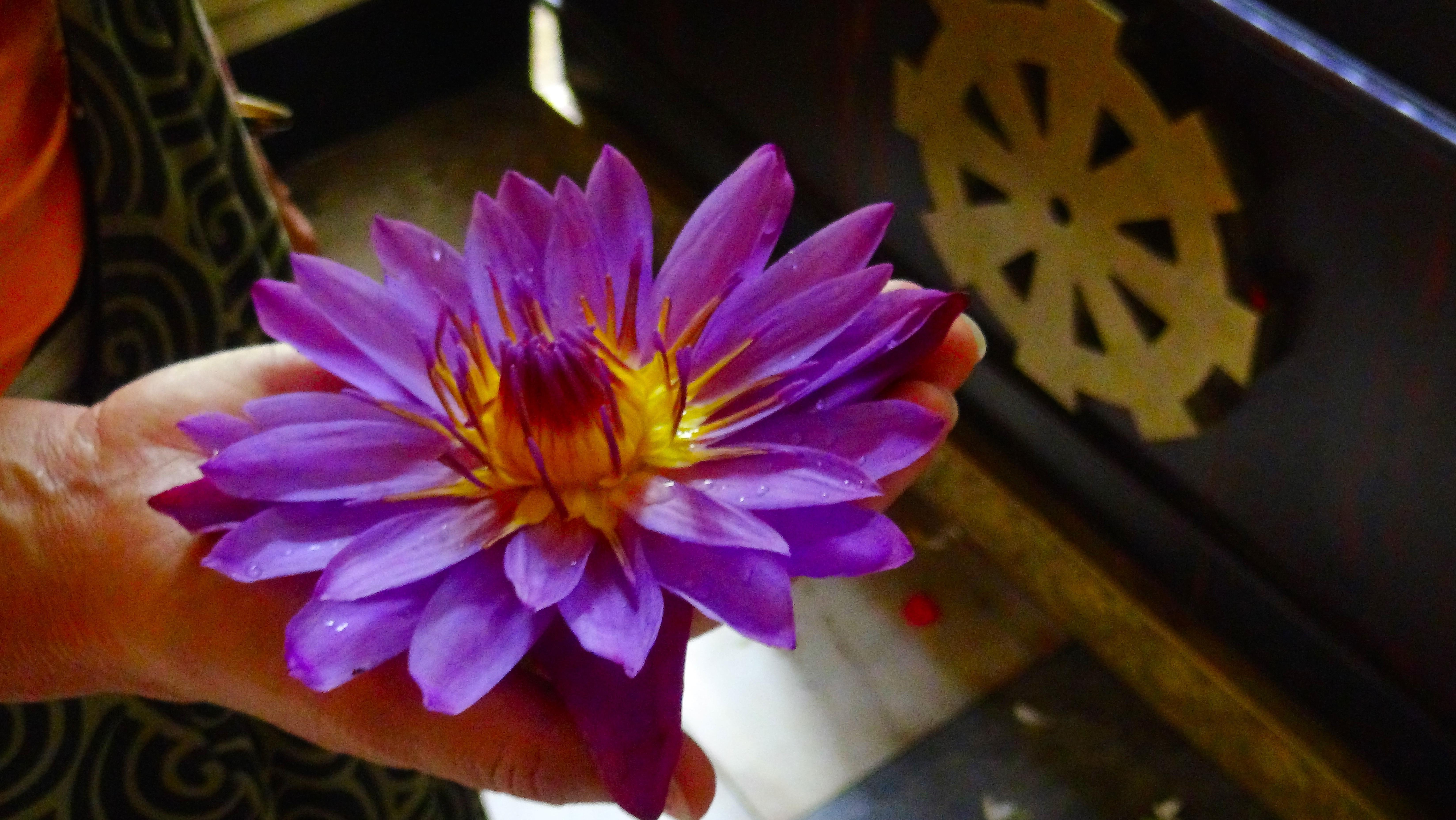 Une prière, une fleur – Kandy