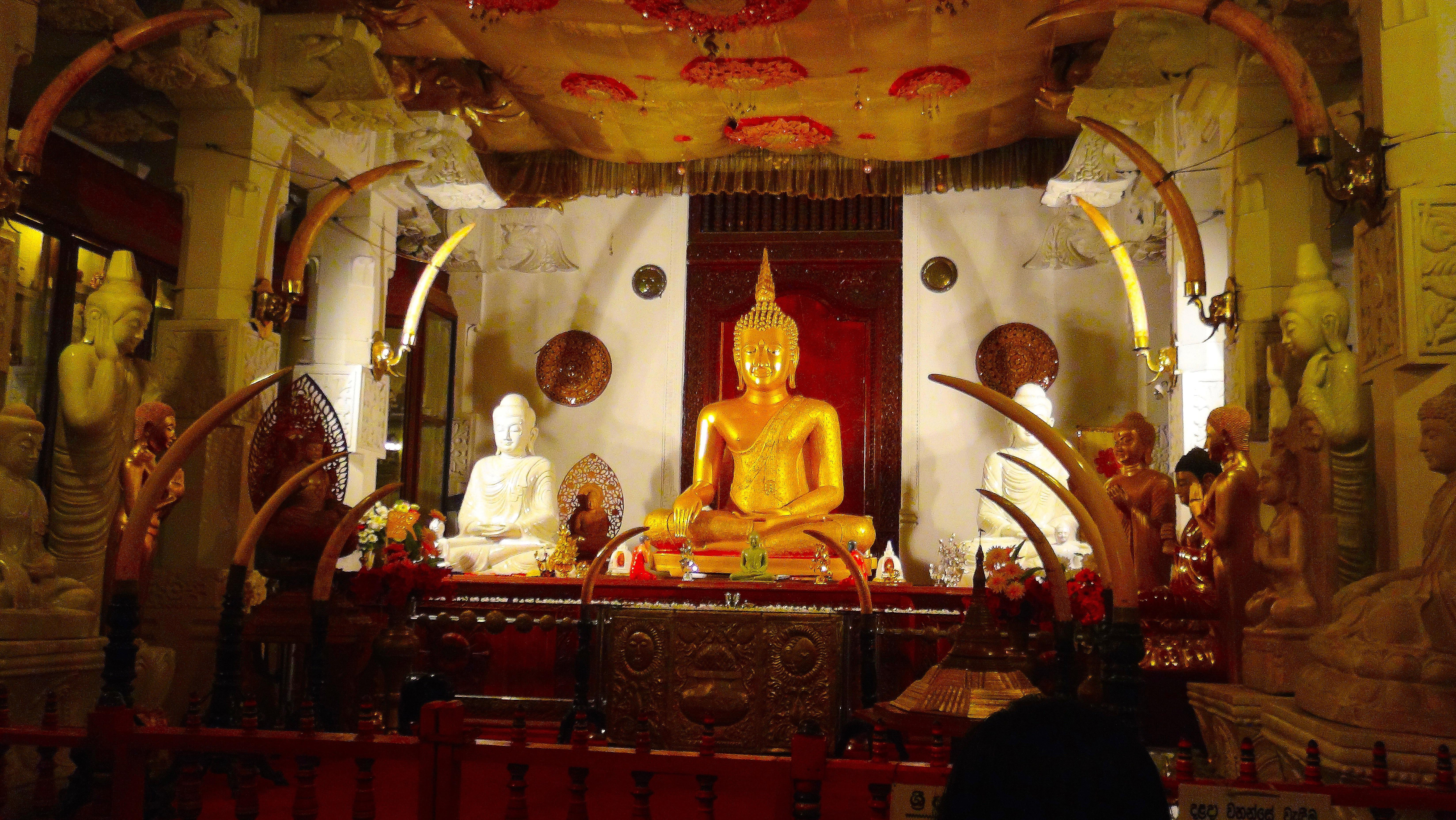 Dans le temple de la relique de la dent de Bouddha – Kandy
