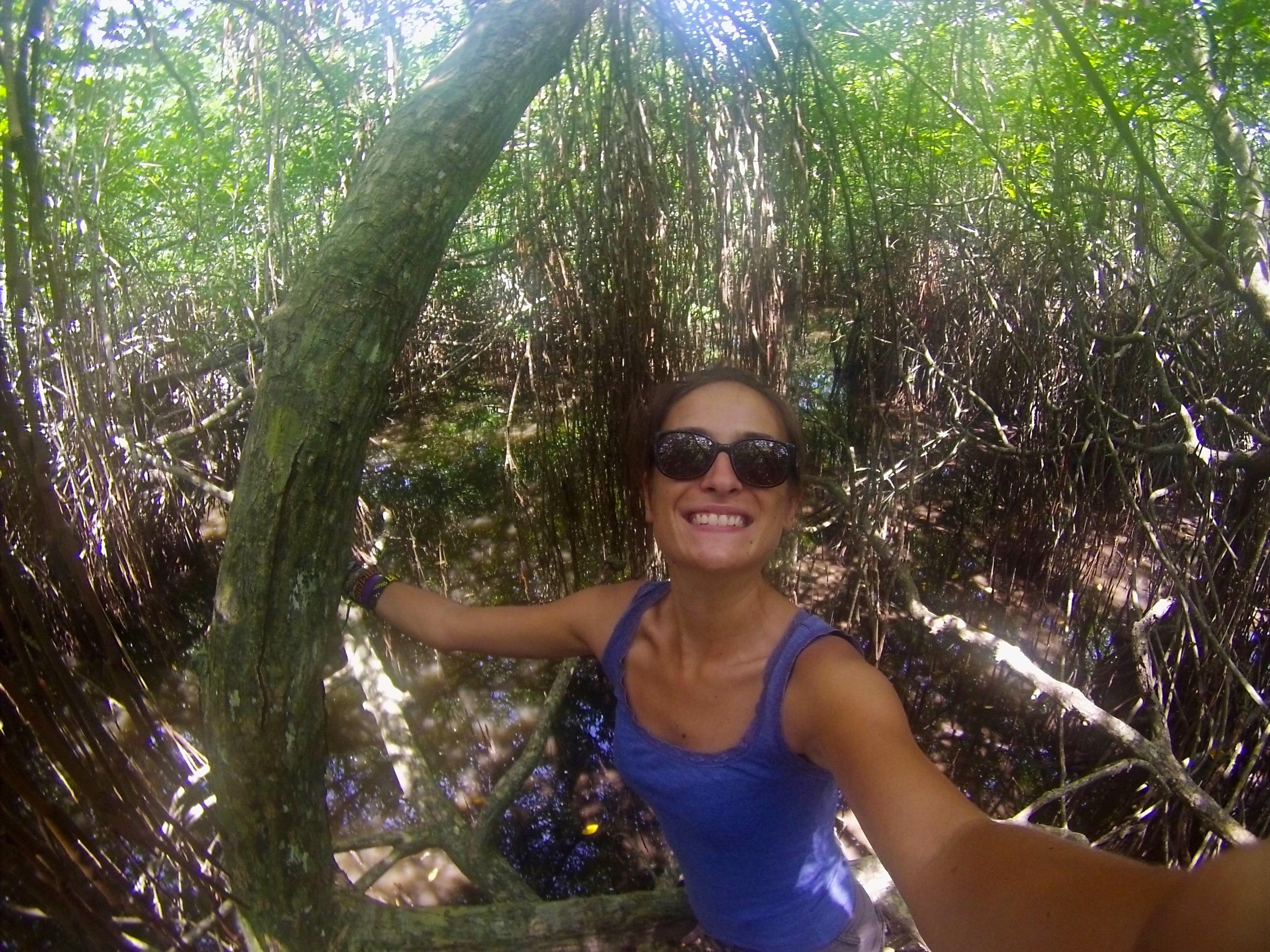Assise sur la Mangrove