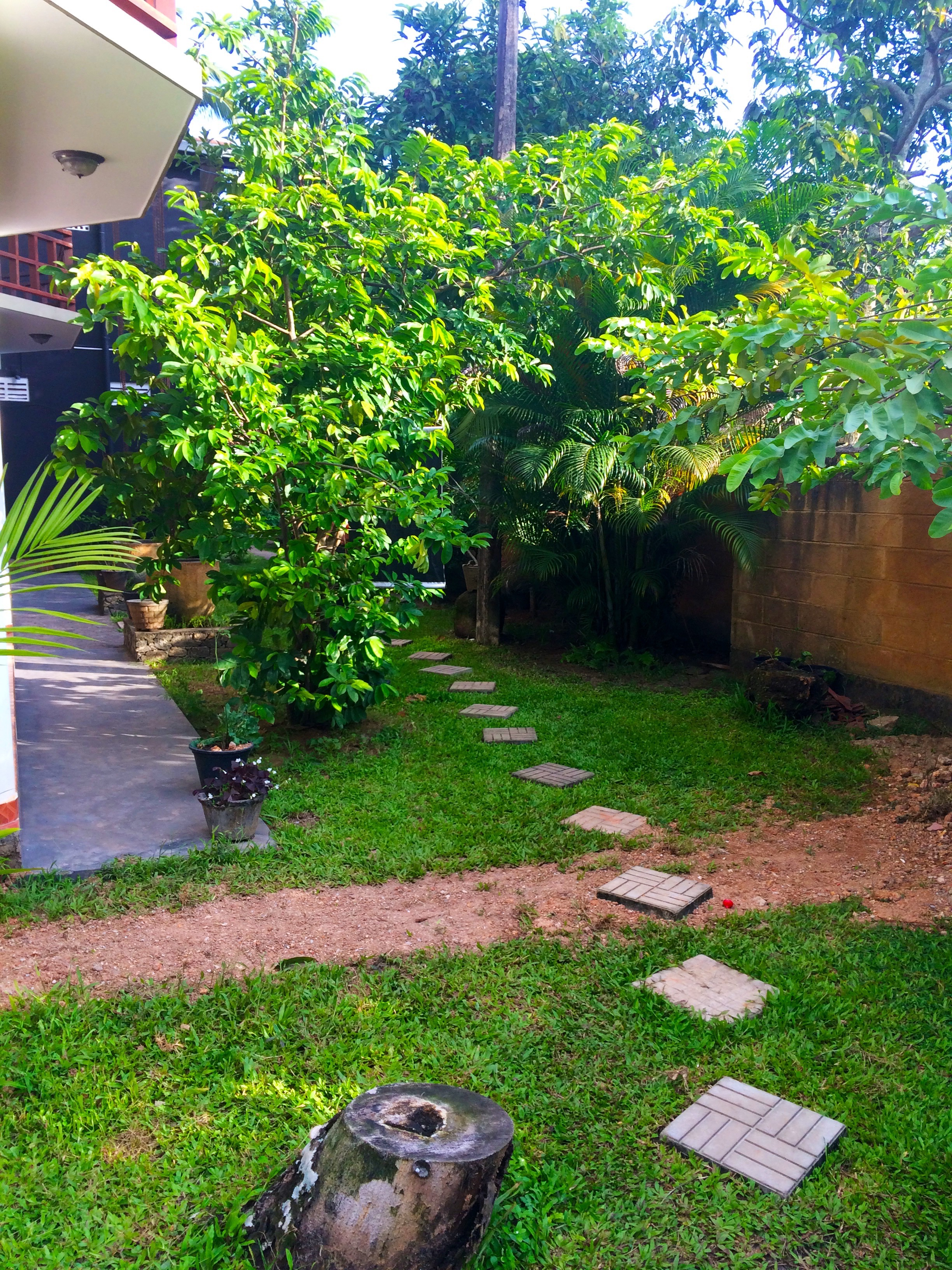Paisible endroit – Galle
