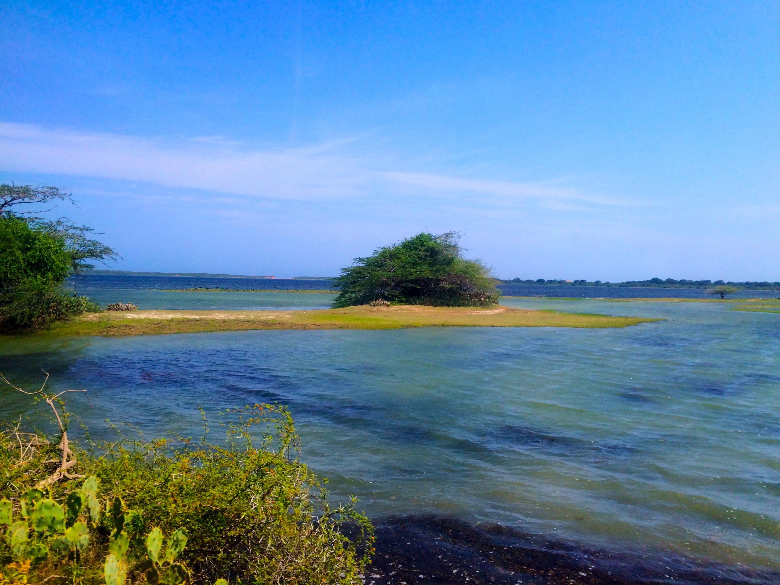 La vue au loin – Yala National Park