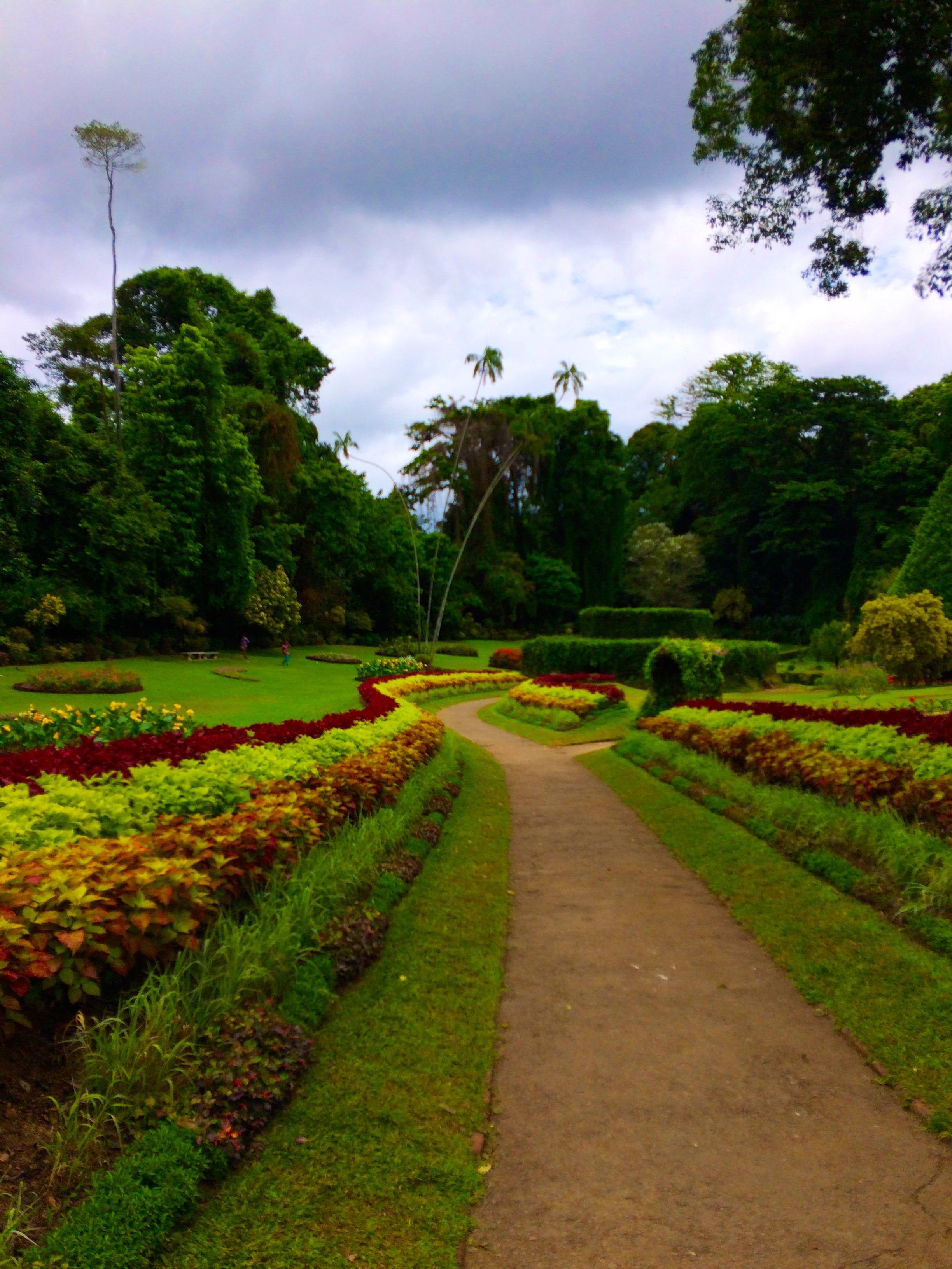 jardin Botanique – Kandy